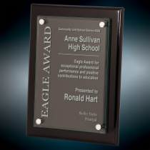 9 x 12 Black Piano Finish Floating Glass Plaque